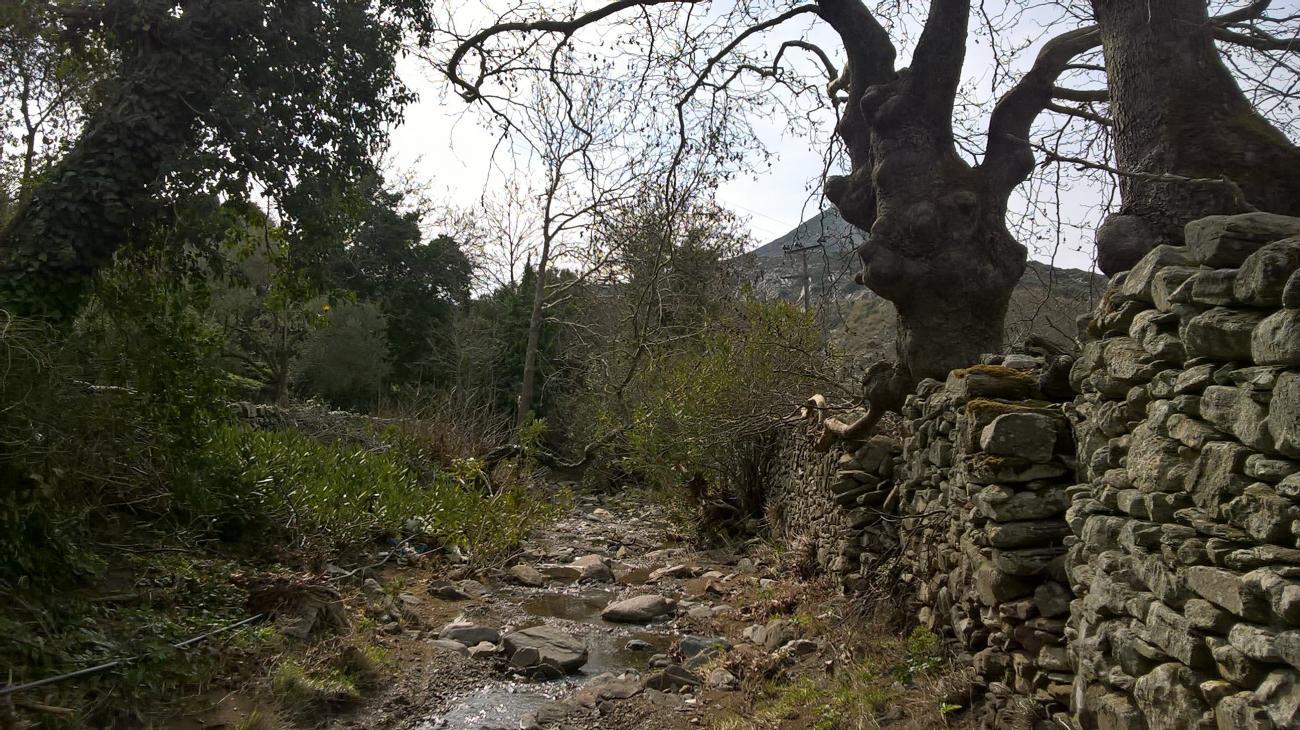Hiking ELaiolithos – Moni – Sifones – Fanari – Sifones – Moni