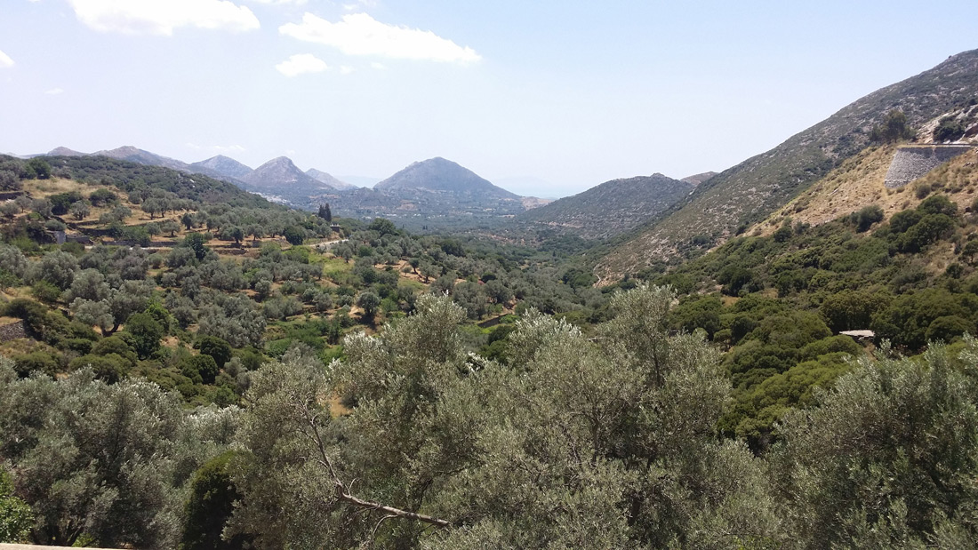 The Poetic World of ELaiolithos Voices of Nature – Birds and Wild Life