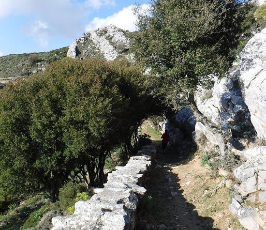 activities in naxos
